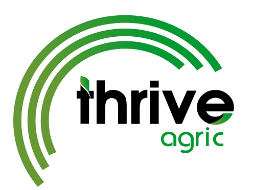 Agrigtech Startup Thrive Agric Targets 50,000 Farmers With New Project